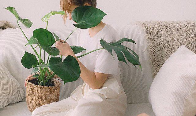 plant natuurlijk wonen